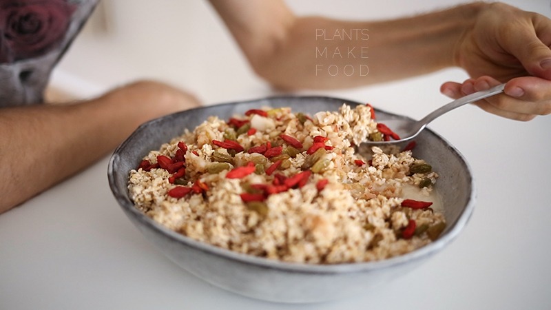 goji berries raisins organic oats